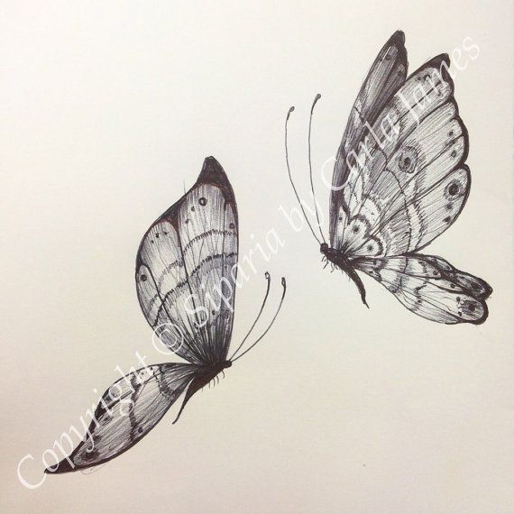 Butterfly drawing  on Etsy, £8.00