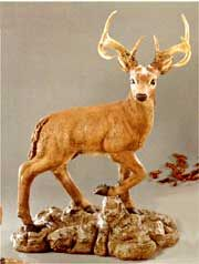 Find the great collectiondeer statues and moose statuesfrom Statue.com at best price. It is the best way to decorate your garden. We also offer standing and reclining doe statues, buck sculptures, and fawn statuary. For more information: http://www.statue.com/site/deer-sculptures.html