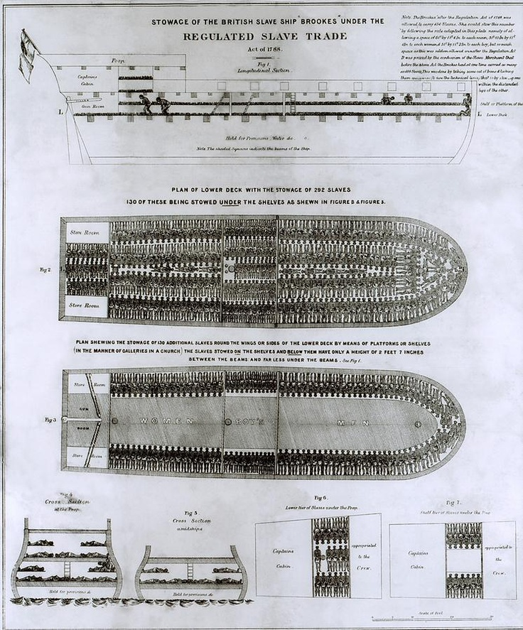 stowage of the british slave ship brookes under the regulated  stowage of the british slave ship brookes under the regulated slave trade theme park british ships and history