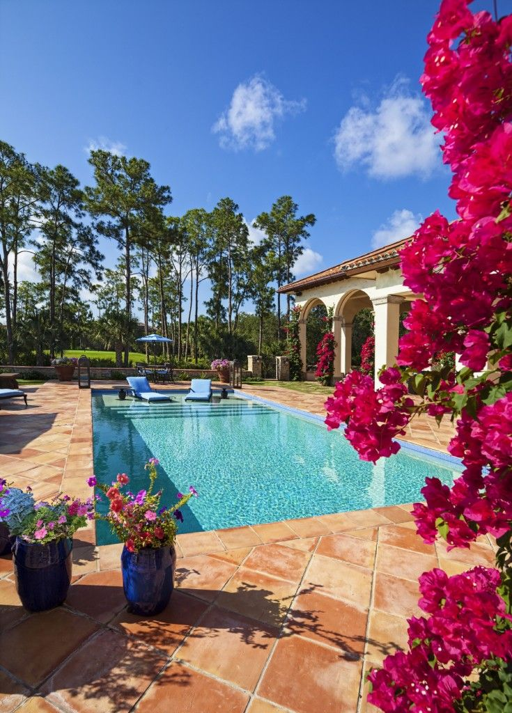 101 swimming pool designs and types photos beach homes for Pool design 101