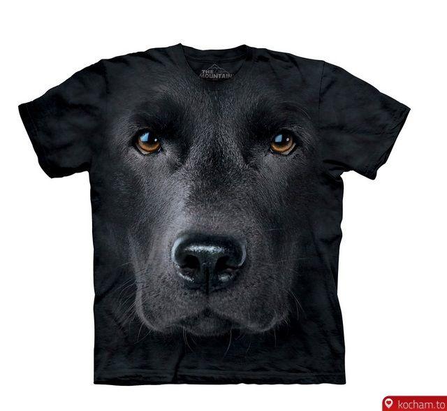 Kocham.to - Koszulka z labradorem