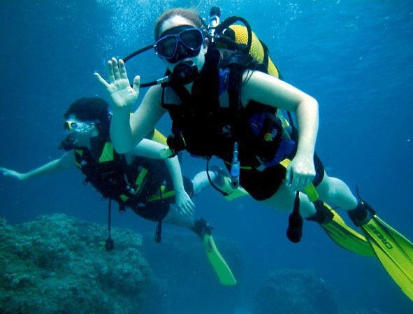 Diving/Scuba/Snorkel  Scuba Diving by SLU Madrid Campus, via Flickr