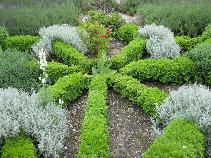 Herb Garden - Cathedral Close