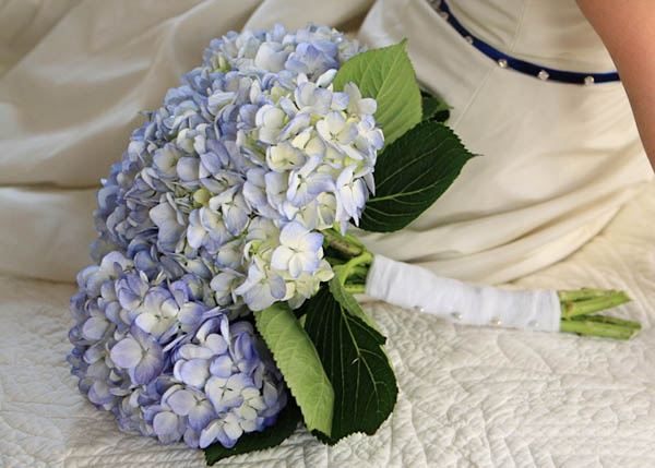 119 Best Hydrangea Wedding Bouquets Images On Pinterest