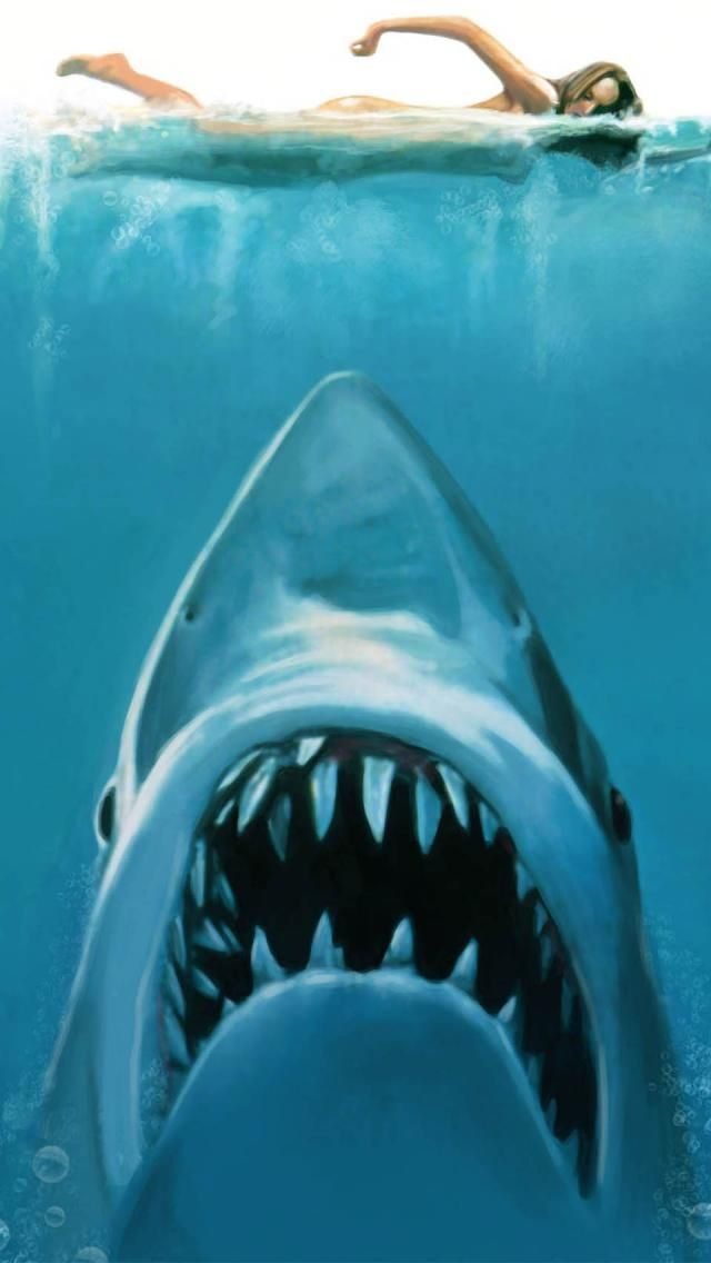 Shark Attack Painting iPhone 5  wallpapers and Backgrounds 640 x 1136