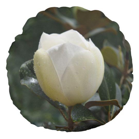 Magnolia Grandiflora Round Throw PillowMagnolia Grandiflora Throw Pillow by www.zazzle.com/htgraphicdesigner* #zazzle #gift #giftidea #magnolia #grandiflora #round #throw #pillow #throwpillow #cushion #nature