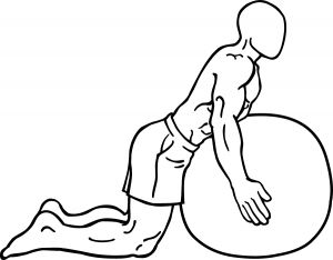 Exercises For Middle Back Pain Middle back pain exercises. Image source: Wikimedia commons