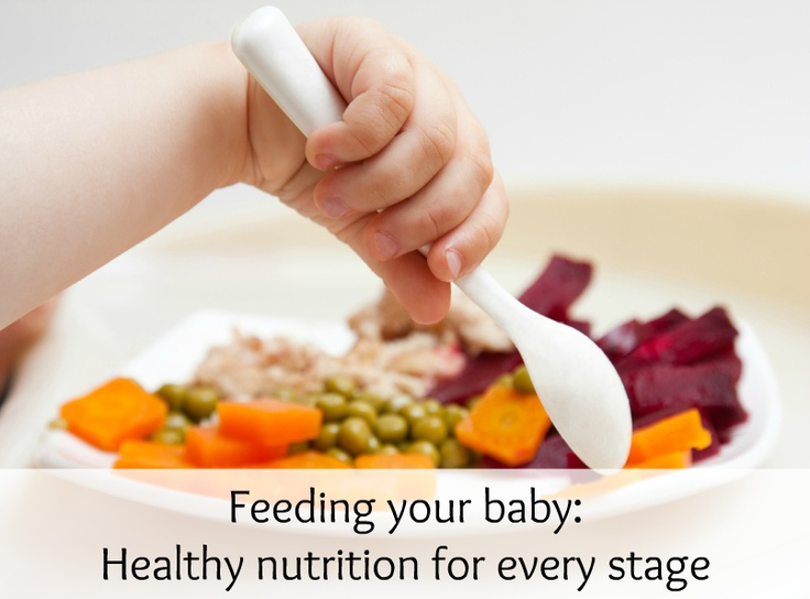 Handy guide for what to feed and when