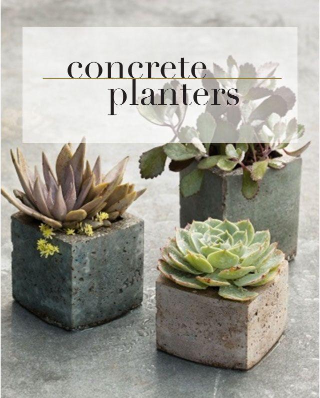 Concrete planters.