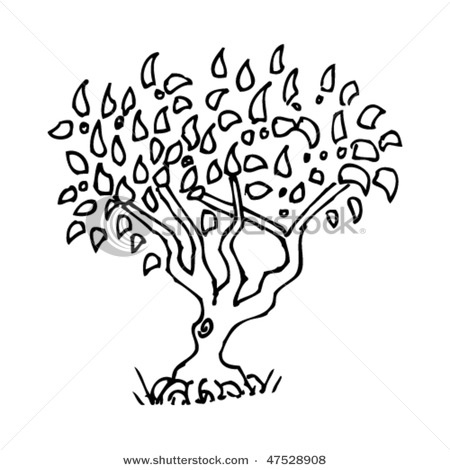 simple tree drawing drawings pinterest trees tree