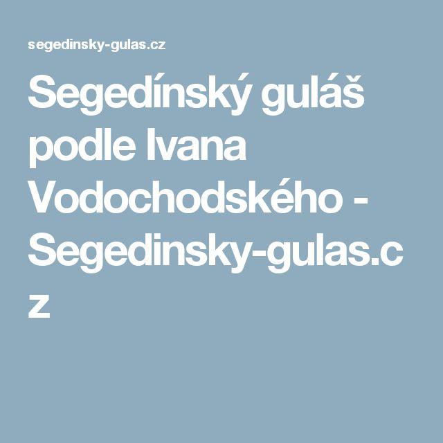Segedínský guláš podle Ivana Vodochodského - Segedinsky-gulas.cz