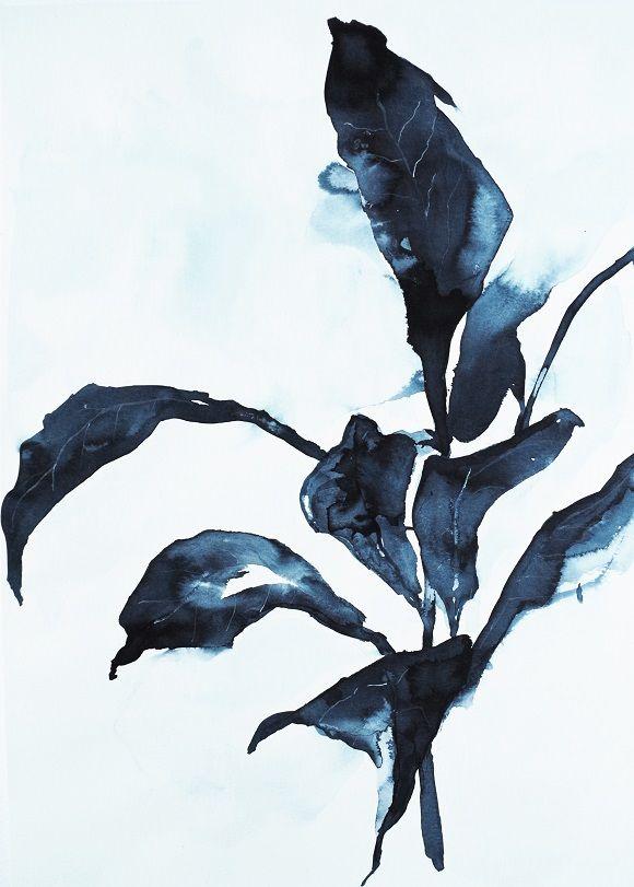 """Obraz na płótnie """"Indigo plant"""""""