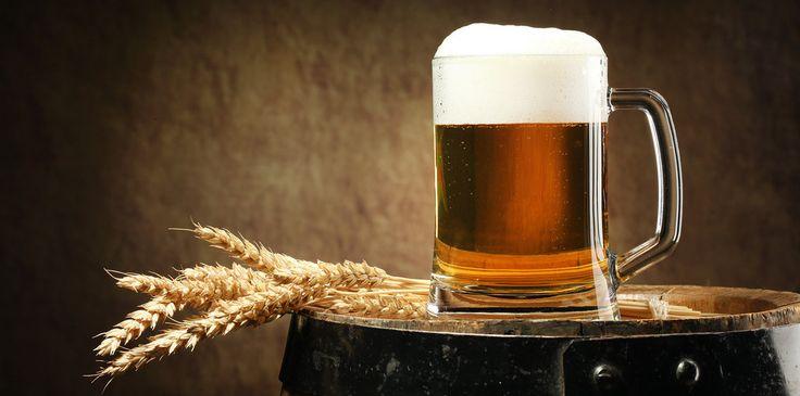 Bierbraukurs für Einsteiger