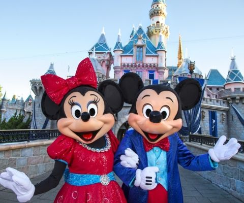 15 Things to Buy BEFORE your trip to Disneyland or Disneyworld