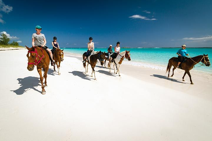 Riding horseback on the pink sand beaches of Eleuthera, Bahamas near Pineapple Fields Resort.