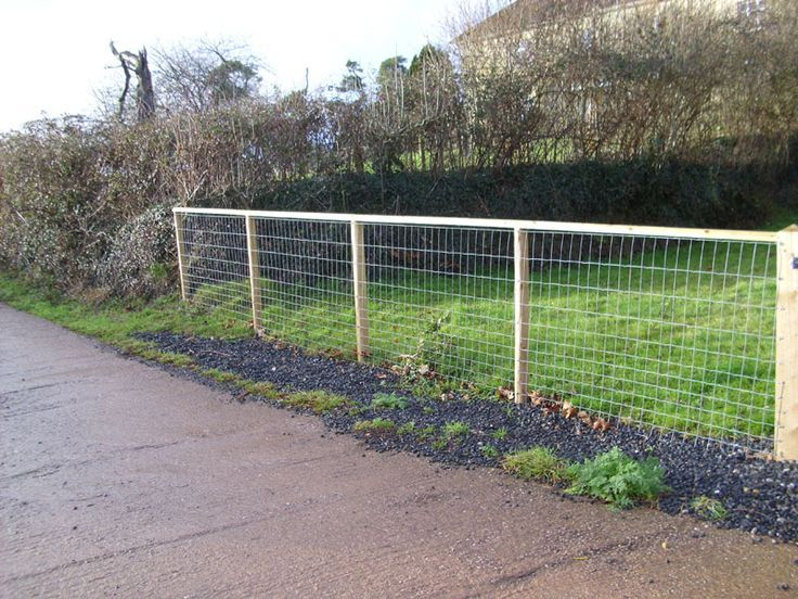 cheapest fence to build - Google Search