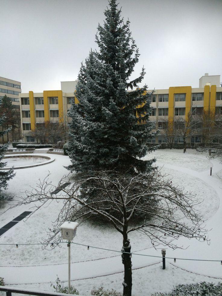 Snow in Munich.