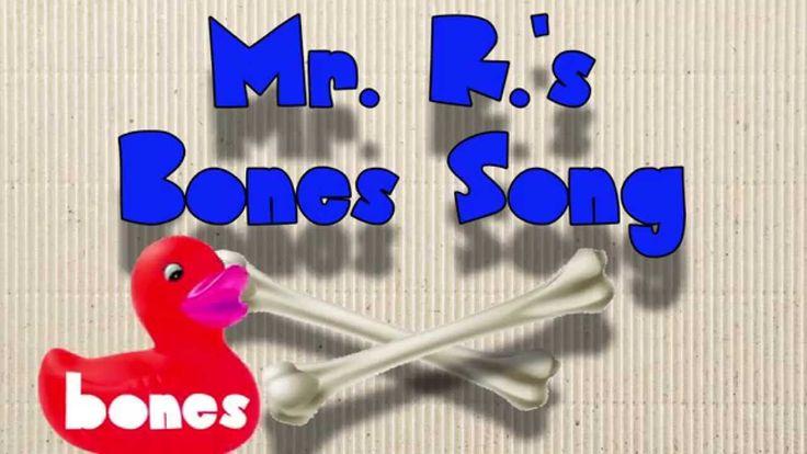 Bones! Learn the bones of the human body!