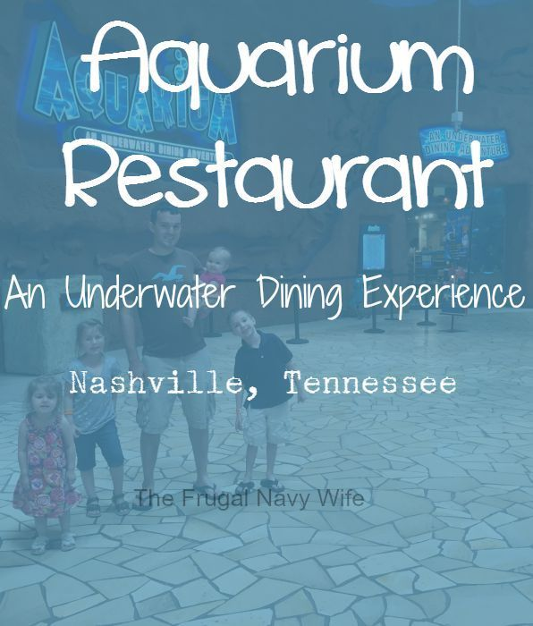 Looking for an Underwater Dining Experience? It's true! The Aquarium Restaurant Nashville Tennessee is the place to go! My kids loved it!