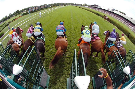 17 best images about horses   horse racing on pinterest