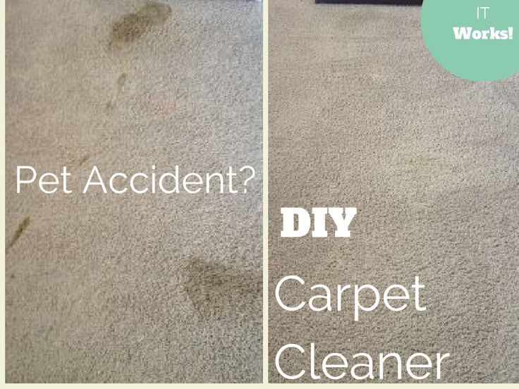 #DIY 2-Ingredient Carpet Cleaner with Odor Remover #cleaner (great for pet accidents, vomit and even cat urine!)