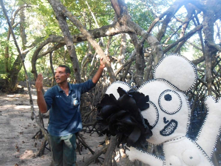 Learning at the National Park about the Flora and Fauna. - Taman Nasional Barat Bali  ( i love mangrove, i love mangrove...)