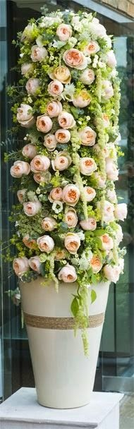 Sweet Juliet in wedding topiary
