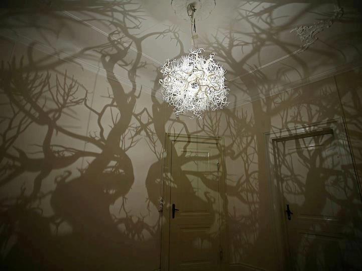 Efeito floresta assombrada...