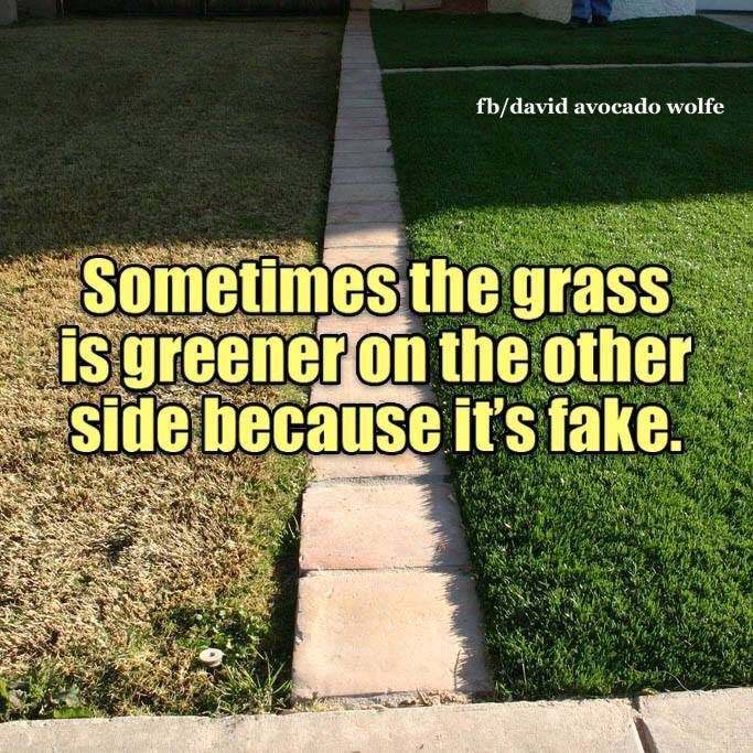 While this is true, and people always think the grass is greener on the side - sometimes even A LITTLE greener IS better. #memes | repinned by @divanyoungnews #drdivanyoung