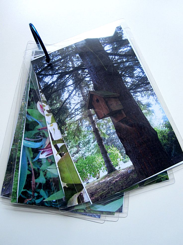 Photo Scavenger Hunt - Take photos around your yard, print them out, trim, & place 2 back to back in self laminating pouches, punch a hole & add a binder ring. Let them tell you about it after- which ones were hard to find...