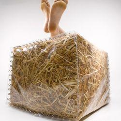 NATURES - Culture sur paille StrawBaleGarden (27)