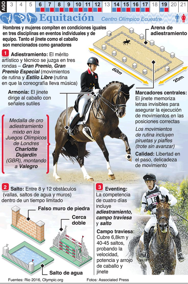Infografía: Equitación en los Juegos de Río 2016