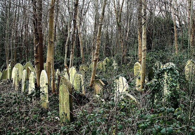 Highgate Cemetery in North London - more a haunted wood then a graveyard, but a very cool place.
