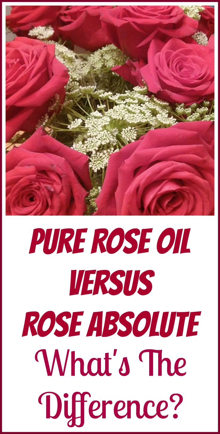 What's the difference between pure rose essential oil and rose absolute? Which is the right one for you?
