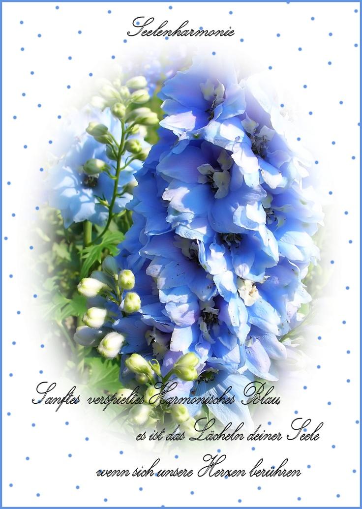 Patricias Postkarte * für deinen Liebsten * by Patricia Lefaye du Monte