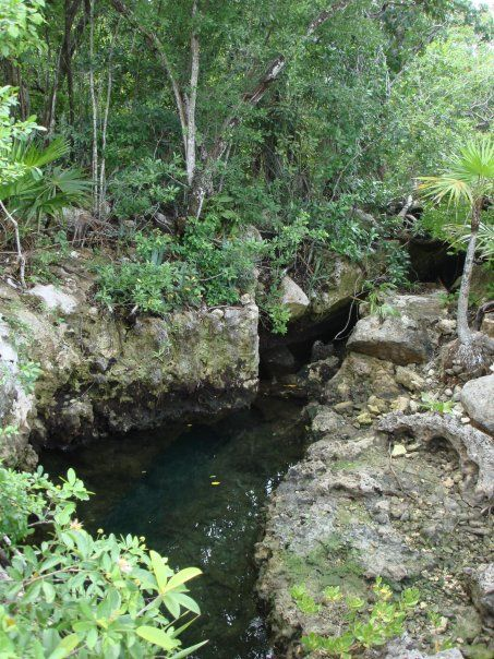 Cenote - Cancun - Mejico