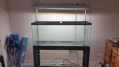 55 Gallon Aquarium with stand and lights PLUS 20 gallon tank and free stuff!!!