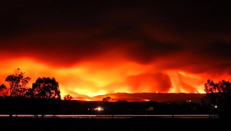 Gippsland (not taken by myself) bush fires Victoria - eerie but beautiful at the same time