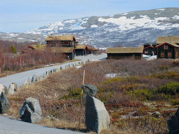 Dovrefjell. Norway