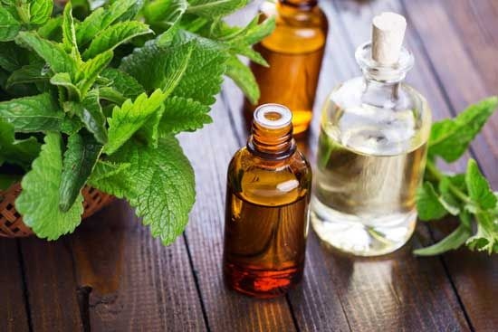 Cold Symptom Relief Massage Oil Recipe - Health and Wellness - Mother Earth Living
