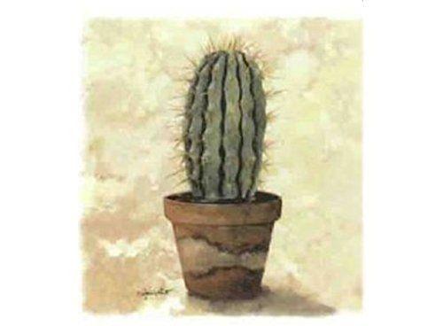coupons cactus