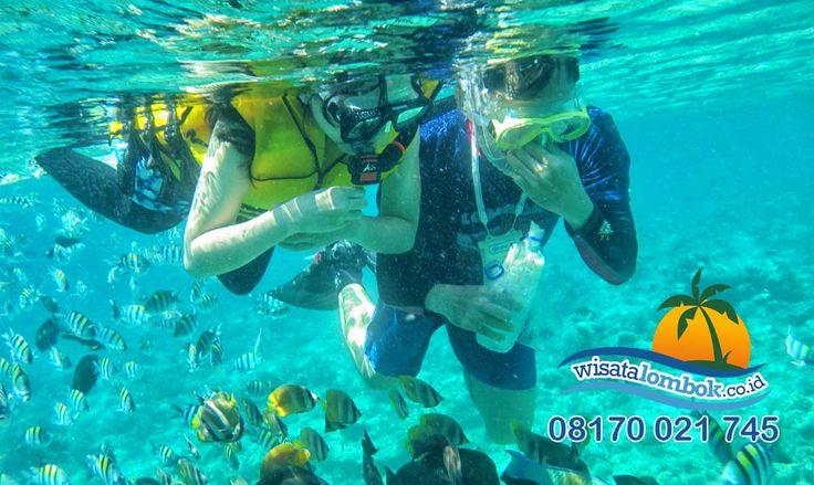 Ini Alasan Mengapa Orang Banyak Memilih Gili Trawangan Lombok  Disinilah Anda bisa menemukan berbagai tempat wisata yang indah nan cantik, bagaikan surganya dunia. Gili ini memiliki hamparan pasir putih yang bersih serta pesona lautnya yang indah dan memiliki kaya akan biota laut dan cocok untuk Anda Snorkeling di sini... . . . . . . . . . . . http://www.wisatalombok.co.id/…/ini-dia-rahasia-mengapa-gi…/
