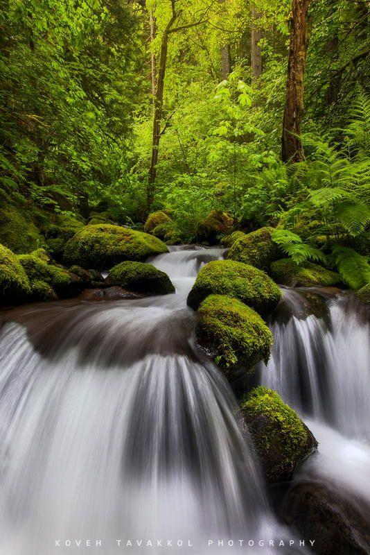 Creek by Koveh Tavakkol on 500px