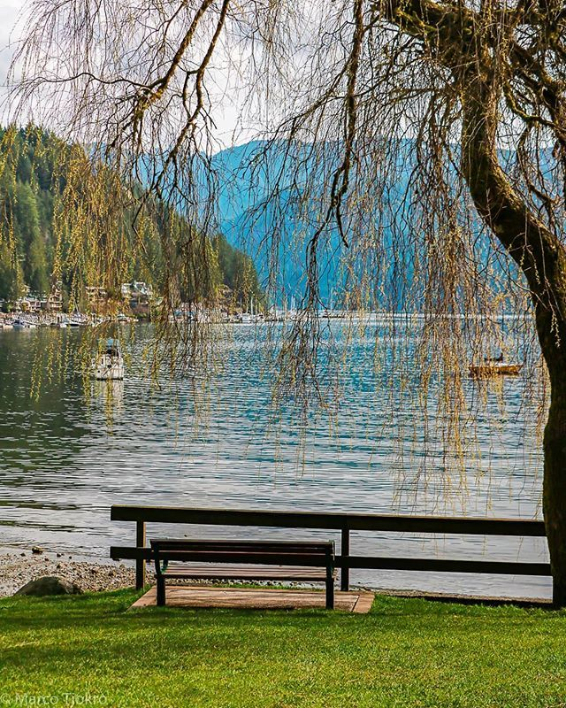 Chilling by the sea/lake  #deepcove #lake #ocean #northvan #explorebc #dailyhivevan #spring #picnic
