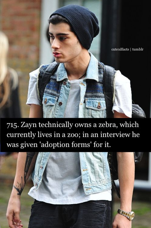 Cute One Direction Facts