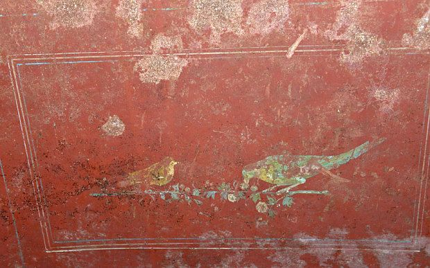 A fresco depicting birds on the walls-1st c basilica of Porta Maggiore Rome