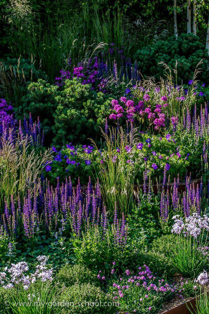 Chelsea Flower Show. Image via: https://s-media-cache-ak0.pinimg.com/originals/b3/58/c0/b358c02857b3a8921413e628a554a756.jpg