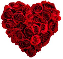 4 Dating Tips to Get Some Love this Valentine's Day https://nevertoolate.biz/2015/02/14/4-dating-tips-to-get-some-