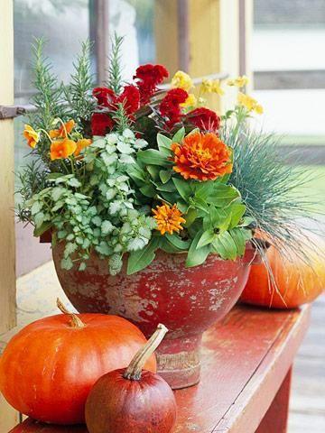 Clockwise, from top middle: red cockscomb celosia, yellow pansies, blue fescue ('Elijah Blue'), orange 'Peter Pan Mix' zinnias, 'Pink Pewter' lamium, 'Deep Orange' pansies and rosemary.