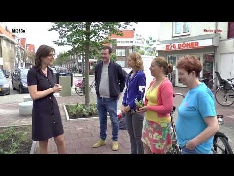 Wethouder opent buurttuin aan de Rijksstraatweg - Haarlem updates